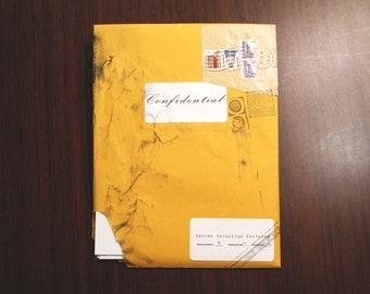 "Erotic Pop Art Blind Box Mystery Print Pack ""Confidential"" #13 [5 random prints, possible sizes 4x6/8x8/8x10]"