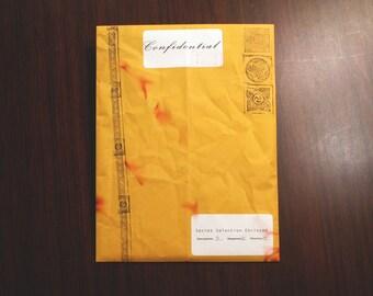 "Erotic Pop Art Blind Box Mystery Print Pack ""Confidential"" #14 [5 random prints, possible sizes 4x6/8x8/8x10]"
