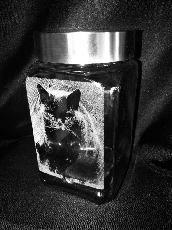 PHOTO ENGRAVED JAR cookie glass etched picture, memorial,pet, Mother's Day, personalised, cat, dog, horse, mum, dad, daughter, son, biscuit