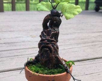 Mini Mandrake Harry Potter Plant Great Christmas Holiday Gift
