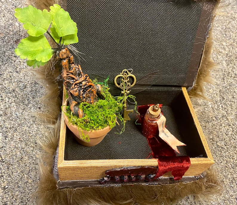 Harry Potter Monster Book Mandrake Flying Key Gift Set  Great image 0