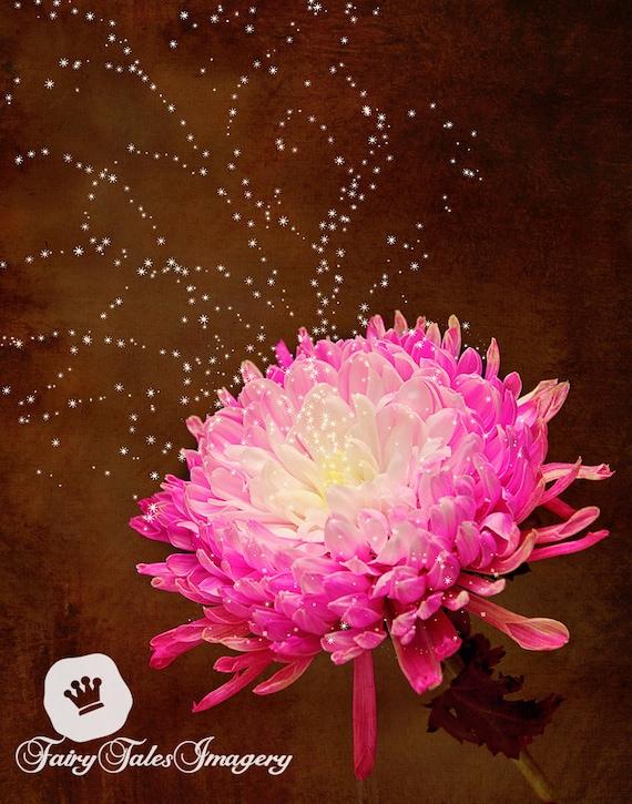 Lona Floral de flores de primer plano pétalos de una sola pared arte Foto impresión