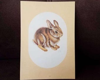 Gordon fraser card etsy vintage bunny card gordon fraser gallery new york stationary show advertisement melanie renn greeting card vintage stationary m4hsunfo