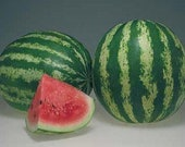 Watermelon Seeds Crimson Sweet
