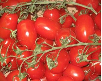 Tomato Seeds Snow White Ukraine Heirloom Vegetable Seeds