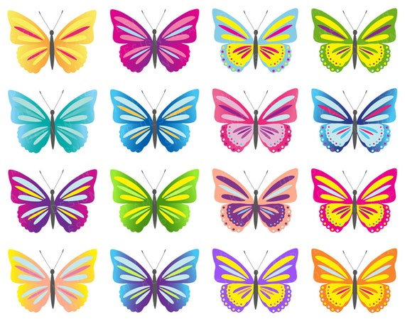 Butterfly Clipart Images, Stock Photos & Vectors   Shutterstock