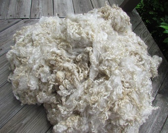 White Wensleydale raw fleece