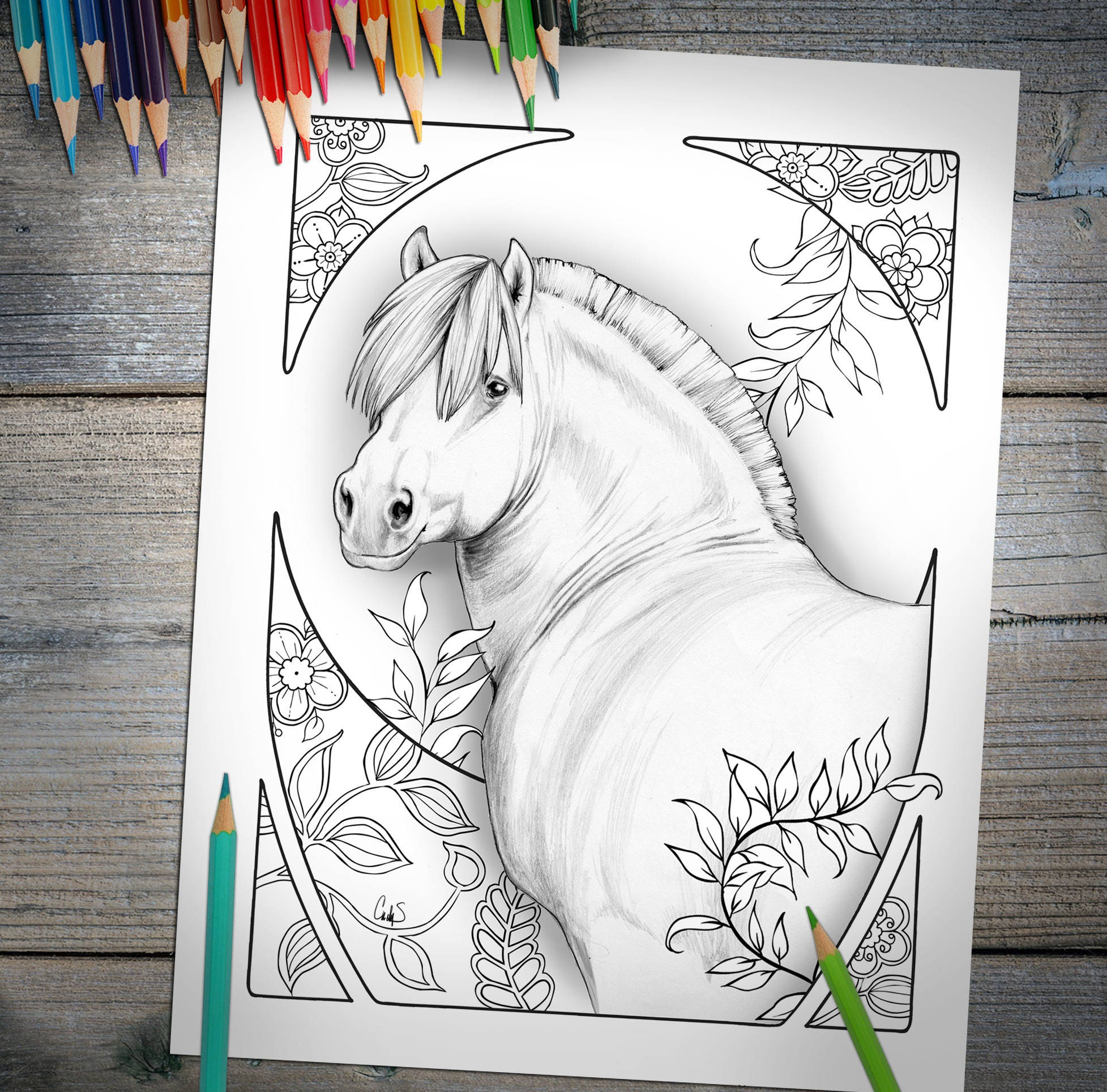 Adult Coloring Book Digital Download PDF, Hand Drawn Horse Color For Adults  To Print Out, Great Gift ON SALE Limited Time