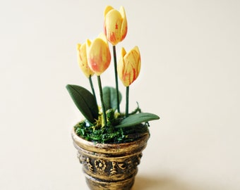 Bicolor tulips in gold vase