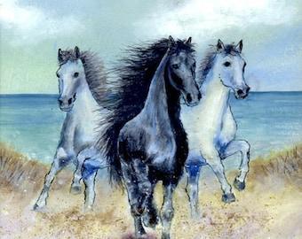 3 beautiful wild horses running in the sand