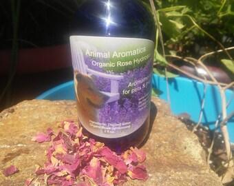 Rose centifolia hydrosol