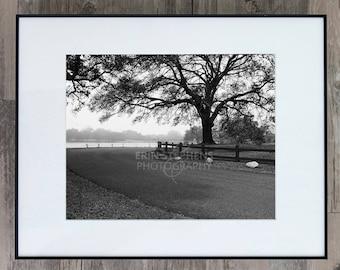 Fine Art Photograph - Around the Bend - Louisiana
