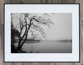 Fine Art Photograph - Louisiana Fog - Baton Rouge