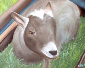 Animal Painting, 14 x 11, Oil Painting, Original Art, Billy Goat Painting, Goat Painting, Zoo Animal Art, Farm Animal Painting, Western Art