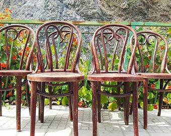 Set 6 thonet/thonet chairs Chairs Set