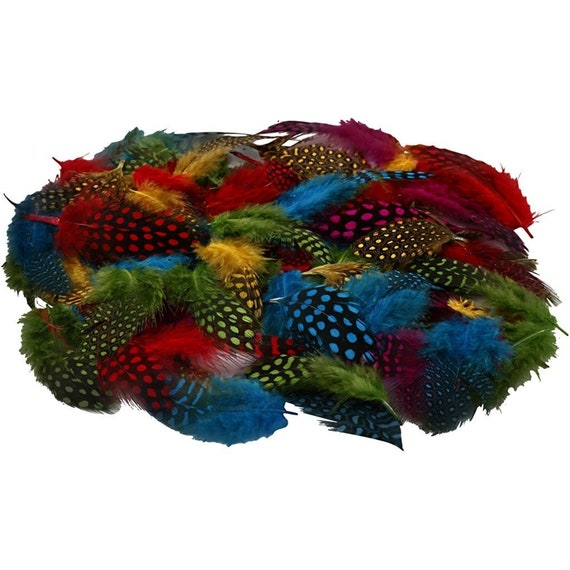 100 x Guinea Fowl Feathers Craft Accessories Decoration Good Quality Natural 3g