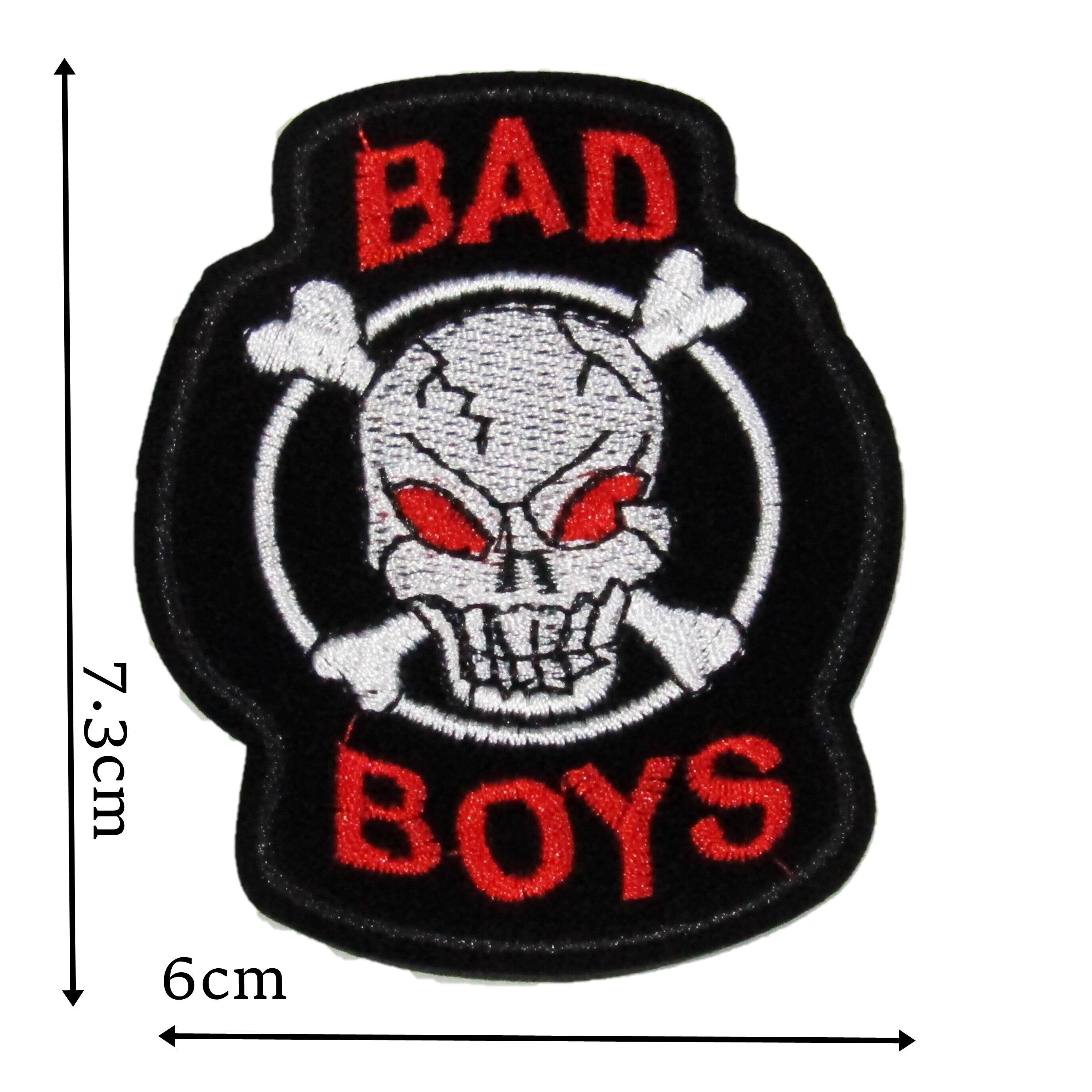 Sleeping Cat Iron On Patch Badge Motif Decoration Applique Art Design Black P485