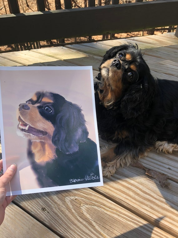 Digitally Hand Drawn Pet Portraits from Photo. Physical product printed.
