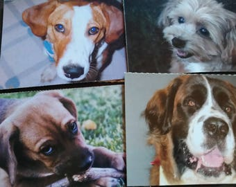 Dog theme post cards lot of 9