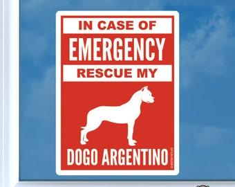 Dogo argentino dogs | Etsy NZ