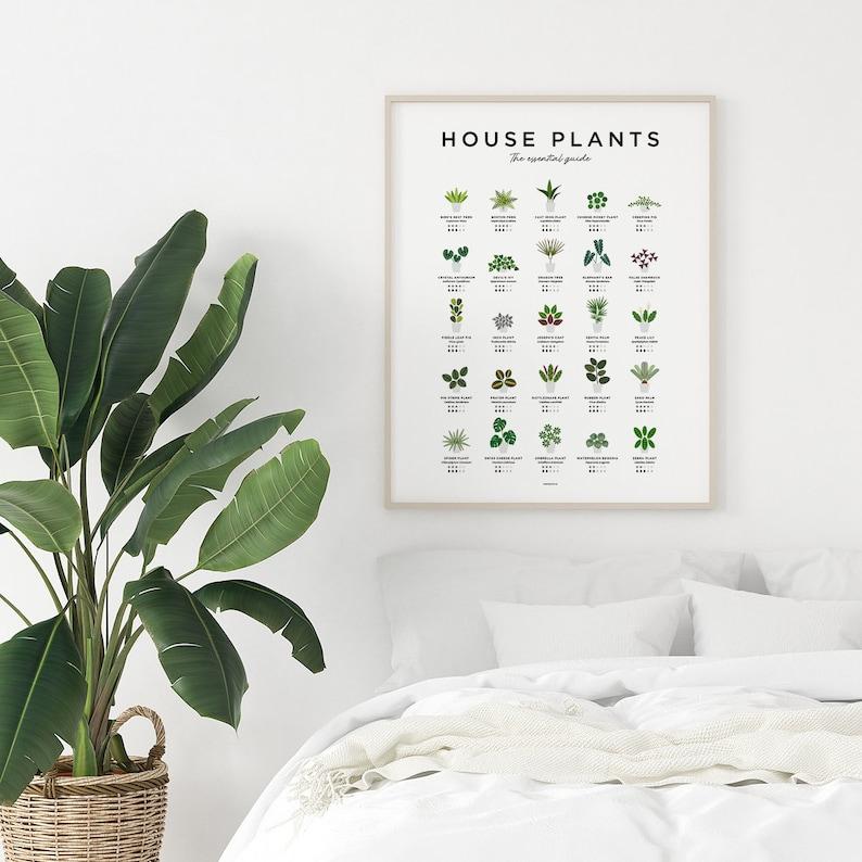 House Plants Print Plant Poster Houseplants Print Plant A2 (42x59.4 cm)