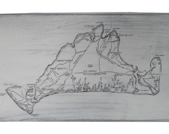 Martha's Vineyard Distressed Decorative Oar