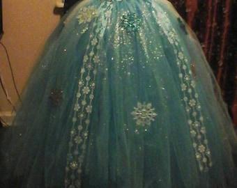Elsa tutu costume