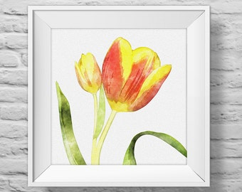 TULIP in YELLOW and ORANGE - unframed square art print, inspirational, nature, floral, watercolor, photography, wall decor. (R&R0134)