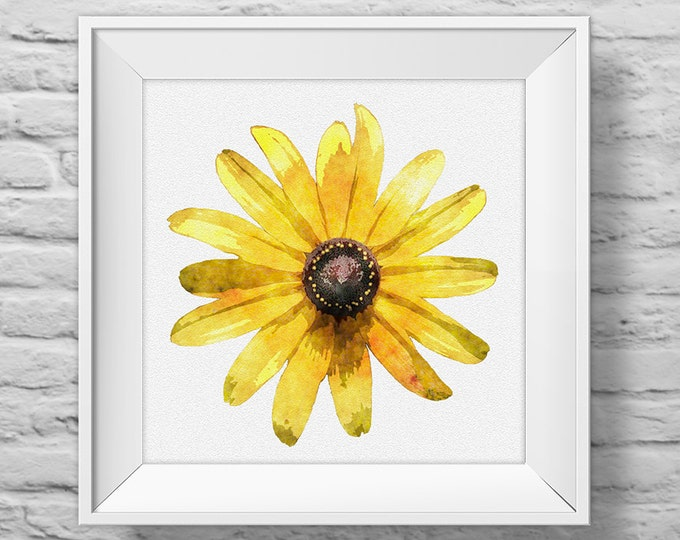 BLACKEYED SUSAN in YELLOW - unframed square art print, inspirational, nature, floral, watercolor, photography, wall decor. (R&R0136)