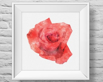 ROSE IN CORAL unframed square art print, inspirational, nature, floral, watercolor, photography, wall decor. (R&R0103)