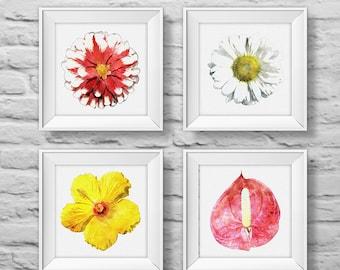 Floral Bouquet #6 (set of four) square unframed art prints, nature, floral, watercolor, photography, wall decor. (R&RBOUQUET6)