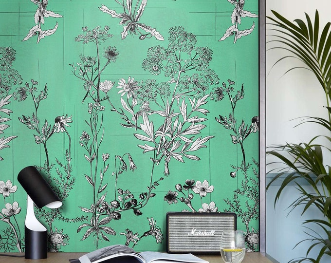 Botanical illustration wallpaper, contemporary botanical wallpaper, botanical wallpaper murals