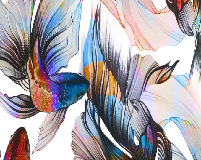 Colorful Wallpaper of Tropical Fish for Modern Beach House Décor