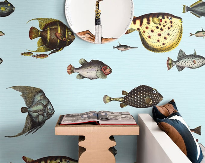 Tropical Fish Wallpaper, Fishes wallpaper, Sea Wallpaper, Inspired fornasetti wallpaper