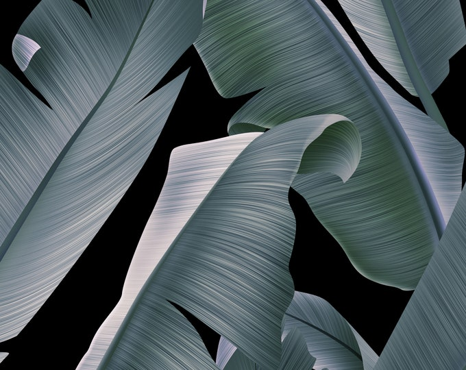 Large Tropical Leaf on Black Background Wallpaper, Boho Wall Décor