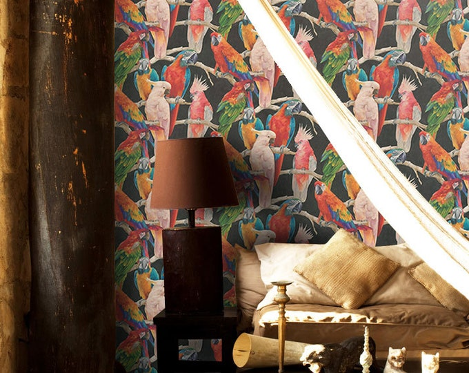 Parrots on Black Background Tropical Wallpaper for a Dramatic Feature Wall
