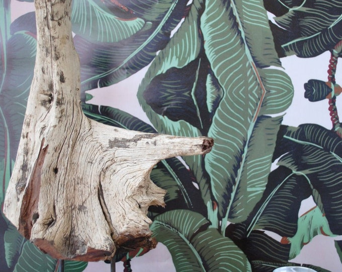 Exotic Banana Leaf Tropical Print Wallpaper, Wall Covering for Modern Beach House Décor