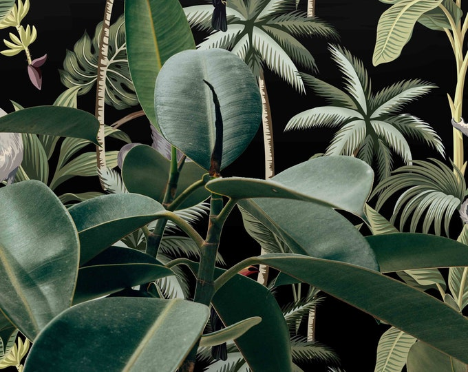Monkey wallpaper, Monkeys Wallpaper, monkeys, wallpaper, jungle wallpaper, forest wallpaper, tropical wallpaper, hanging monkeys