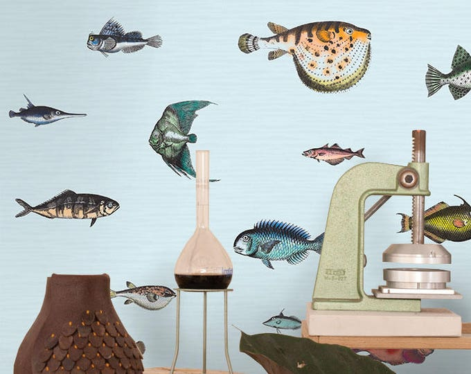 Tropical Fish Wallpaper, Wall Paper, Paper, Wall Art, Kitchen Decor, Bedroom Decor, Kitchen Wall Decor, Bedroom Wall Decor, Ocean Wallpaper