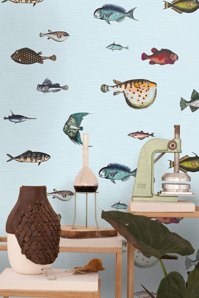 Tropical Fish Wallpaper Wall Paper Paper Wall Art Kitchen Etsy