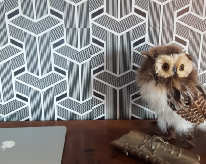 Optical wallpaper, geometric wallpaper, Vintage wallpaper, Retro wallpaper, cubic art, temporary wallpaper, retro wall art, geometric