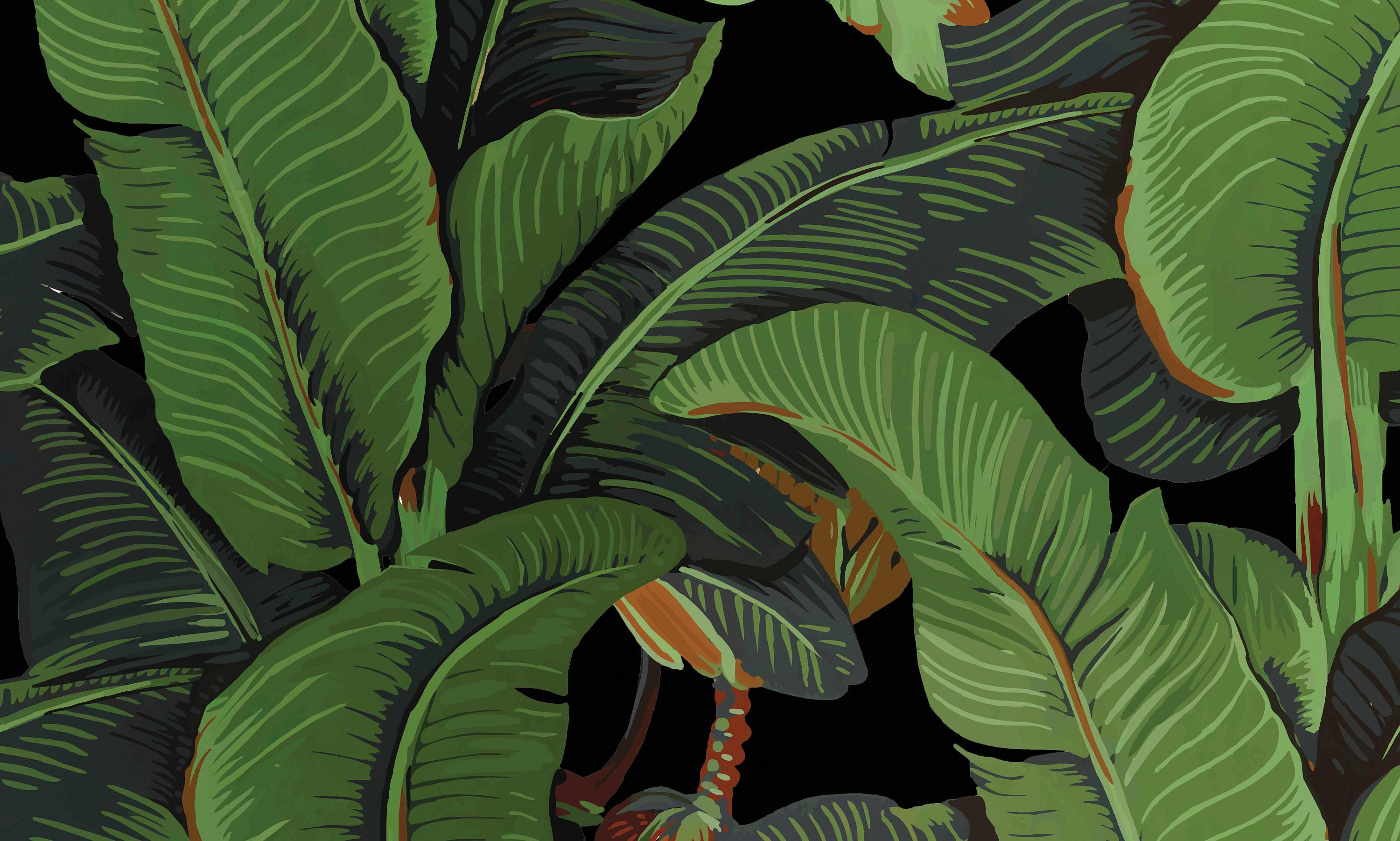 Black Banano Leaf Wallpaper Banana Leaves Wall Decor Tropical
