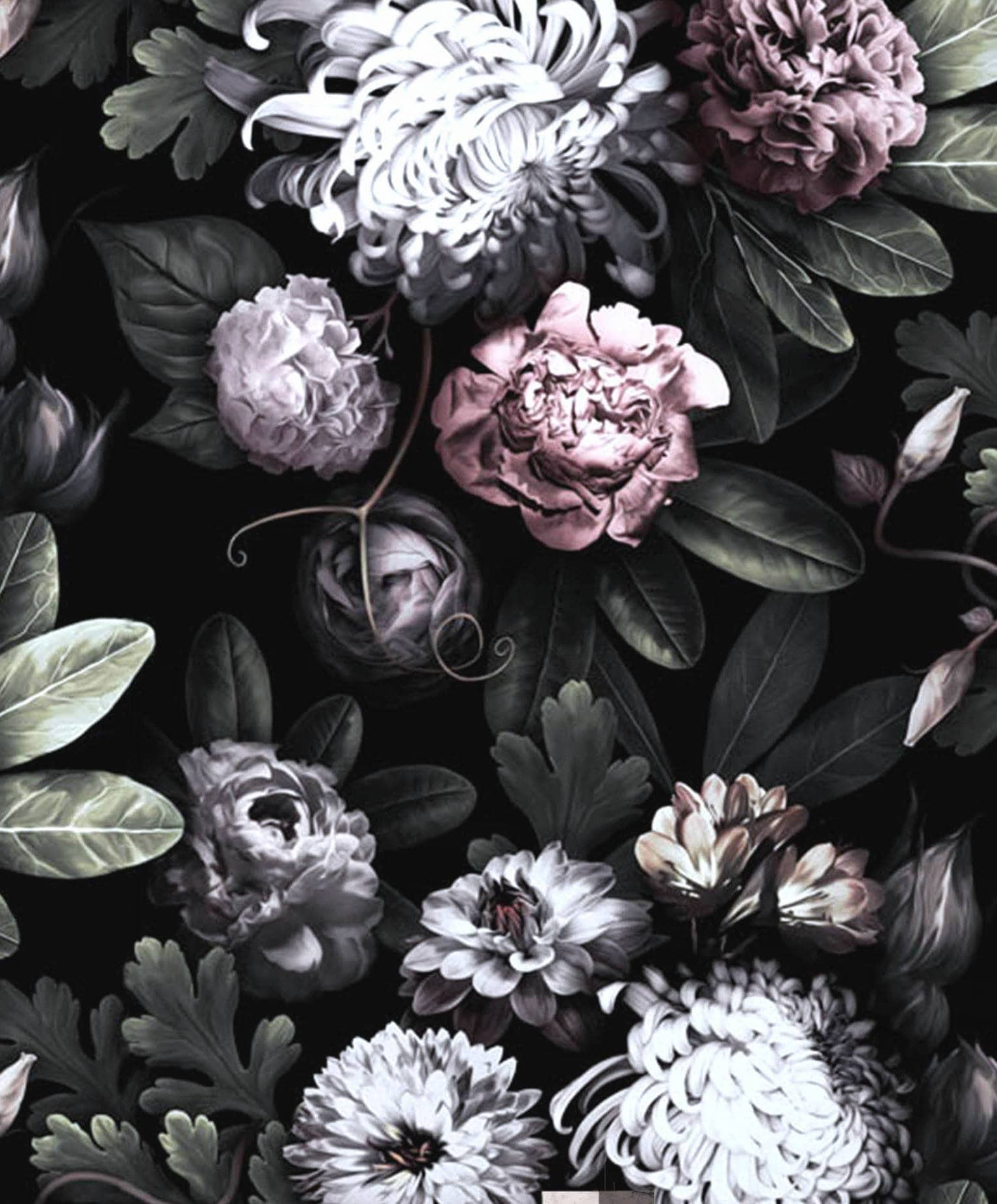 Computer Wallpaper Nz: Dark Floral Wallpaper, Floral Wallpaper, Dark Flowers