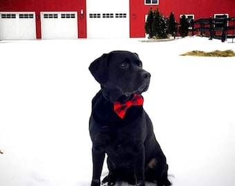 Lumberjack Plaid Dog Bow Tie, holiday dog bow, holiday bowtie, cat bow tie, dog lover gift