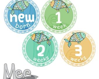 baby boy month stickersdiy printable baby boy milestone stickerssummer stickersfish baby boy monthly stickersfree planner stickerspdf