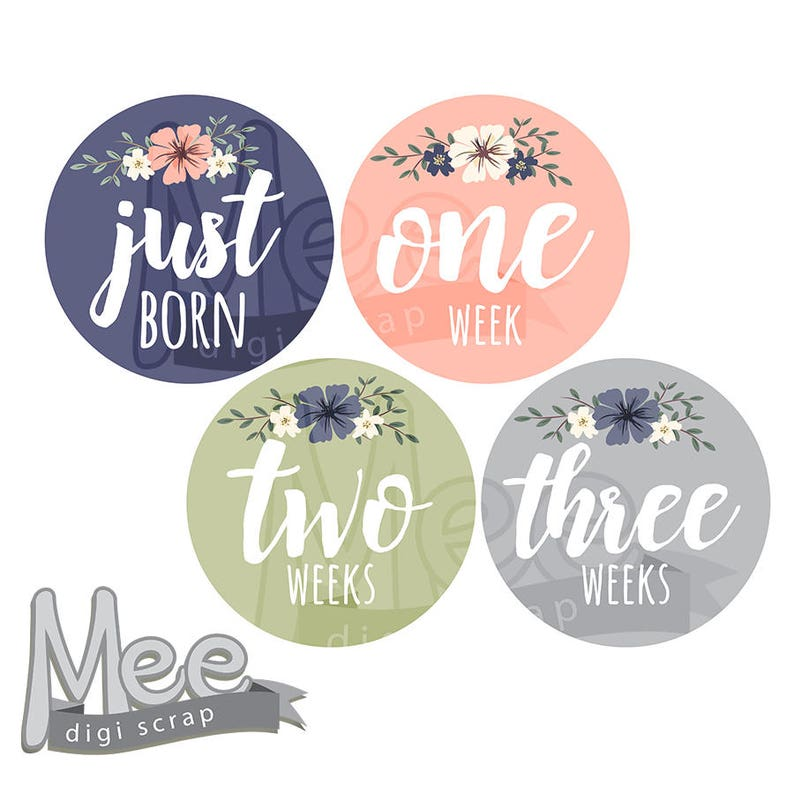 photo regarding Baby Month Stickers Printable named Floral little one mont stickers Do it yourself month to month stickers youngster lady milestone sticker onesie printable sticker summertime bouquets thirty day period planner sticker pdf