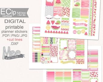 Pink Watermelon printable planner stickers,weekly sticker set,EClp sticker kit,cute summer stickers