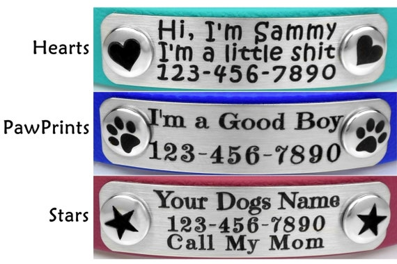 Tag Collar, Small Biothane Collar with Rivet On Name Plate, Snap On Dog Tag  Collar, Personalized Safety Collar,