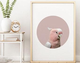 Pink Bird Print, Parrot Art, Tropical Bird, Pink Bird, Pink Tropical Print, Bird Art Print, Modern Bird Art, Scandinavian Art, Abstract Art