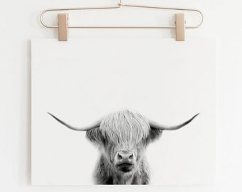 Highland Cow Print, Cute Animal Prints, Farm Animal Prints, Cow Print, Highland Cow Art, Highland Cow Gifts, Animal Print Nursery